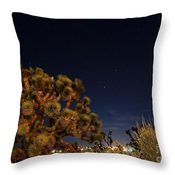 Sharing The Land Throw Pillow by Angela J Wright