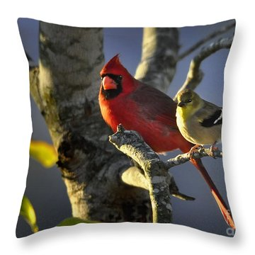 Throw Pillow featuring the photograph Sharing The Light by Nava Thompson