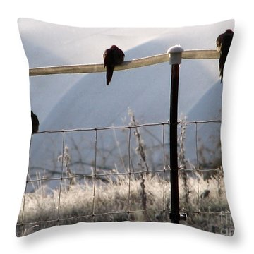 Sharing The Morning News Throw Pillow