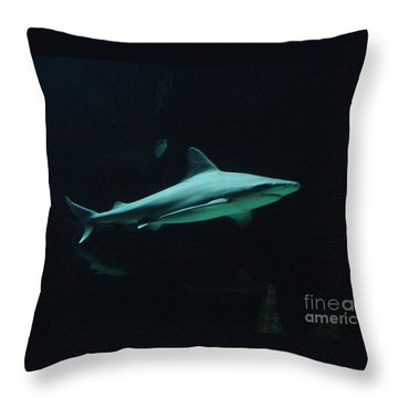 Shark-09451 Throw Pillow by Gary Gingrich Galleries