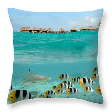 Over-under With Shark And Butterfly Fish At Bora Bora Throw Pillow