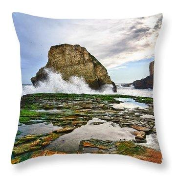 Shark Fin Cove Throw Pillow