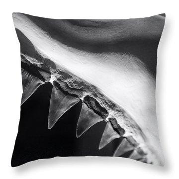 Shark's Teeth Throw Pillow by Lynn Palmer