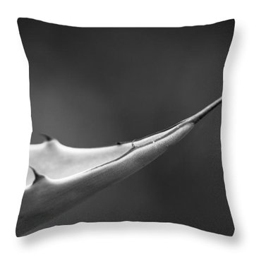 Sharp Agave. Throw Pillow