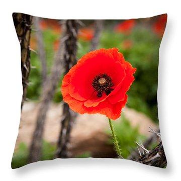 Sharp And Soft Throw Pillow