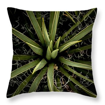 Sharp Points - Yucca Plant Throw Pillow by Steven Milner