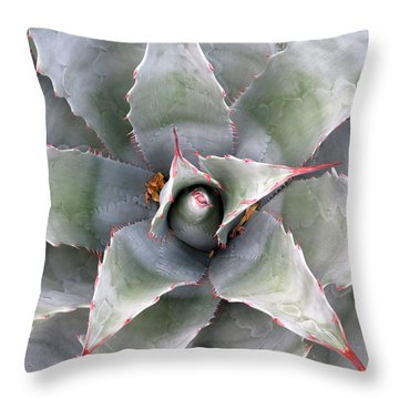 Throw Pillow featuring the photograph Sharply Circular by Laurel Powell