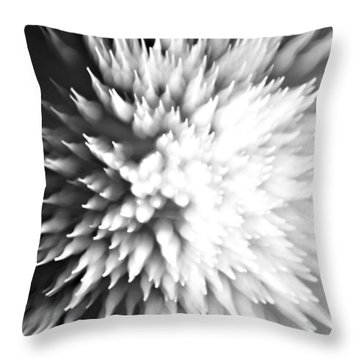Throw Pillow featuring the photograph Shattered by Dazzle Zazz