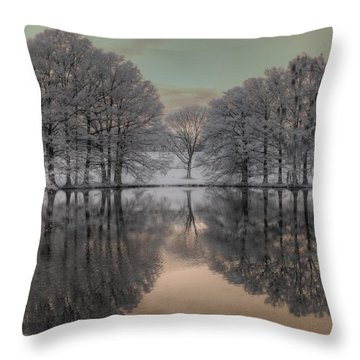 Shaw Nature Reserve Throw Pillow by Jane Linders