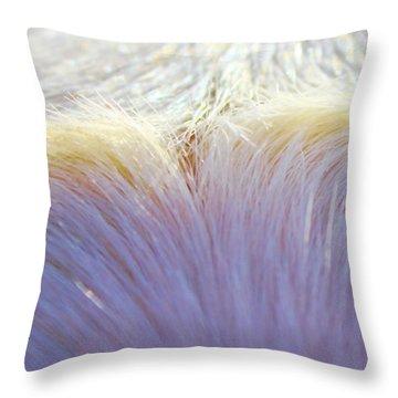 Sheaf  Throw Pillow