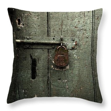 Shed Of Secrets Throw Pillow by RC deWinter