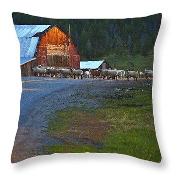 Sheep Crossing Throw Pillow by Theresa Tahara