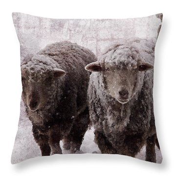 Throw Pillow featuring the digital art Sheep In Winter by Jean Moore