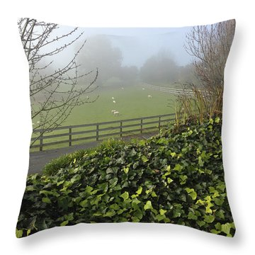 Sheep Throw Pillow by Les Cunliffe