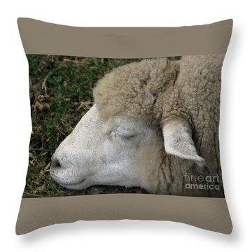 Sheep Sleep Throw Pillow by Ann Horn