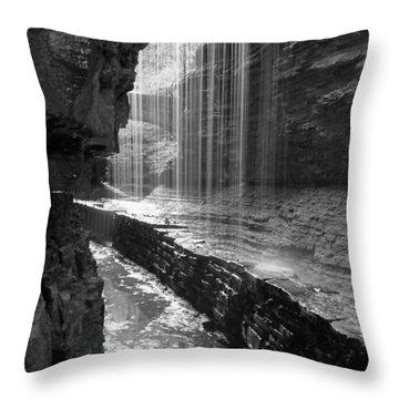 Sheer Elegance Throw Pillow by J Allen
