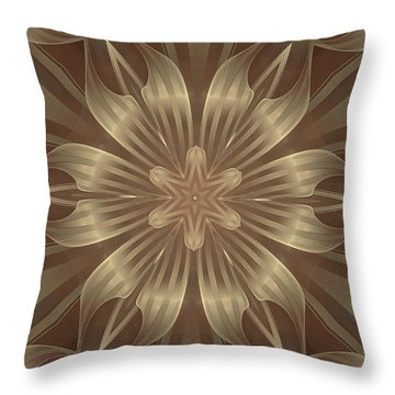 Sheer Linen Throw Pillow