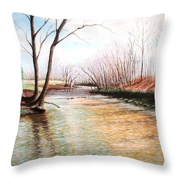 Shelby Stream Throw Pillow by Stacy C Bottoms