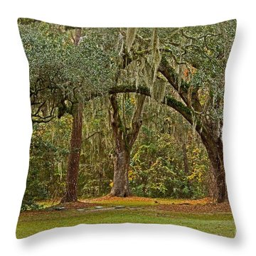 Sheldon Church Yard Throw Pillow