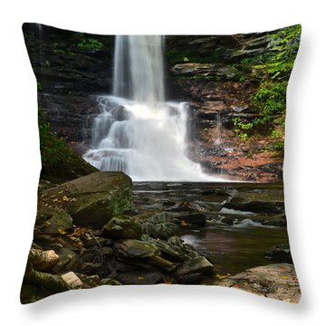 Sheldon Reynolds Throw Pillow by Frozen in Time Fine Art Photography