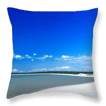 Shell Beach Throw Pillow by Yew Kwang