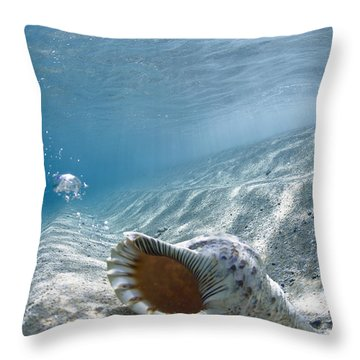 Shell Burp Throw Pillow by Sean Davey