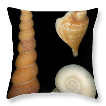 Shell - Conchology - Shells Throw Pillow by Mike Savad