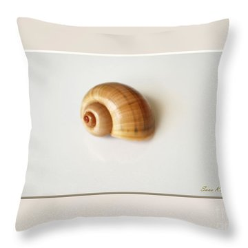 Shell. Delicate Colors Throw Pillow