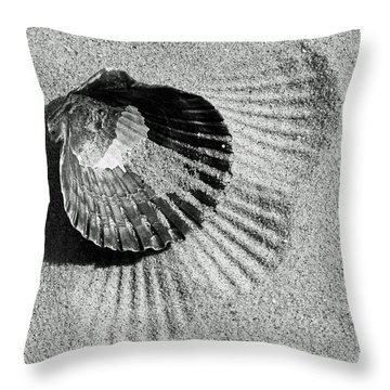 Shell In Black Throw Pillow by Denise Pohl