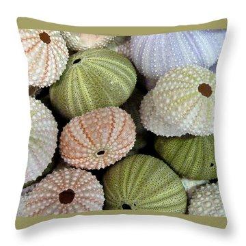 Shells 5 Throw Pillow