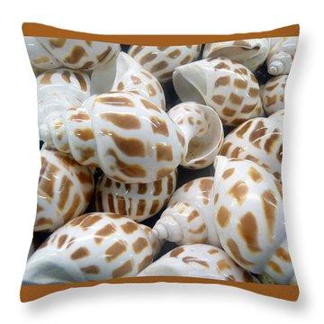 Shells - 7 Throw Pillow