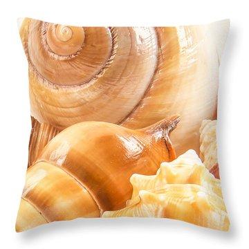 Shells Throw Pillow by Jean Noren