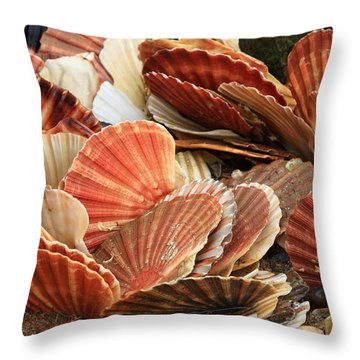 Shells On The Shore Throw Pillow