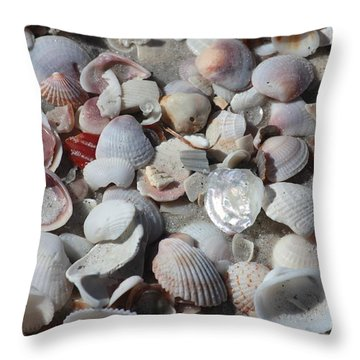 Shells On Treasure Island Throw Pillow by Carol Groenen