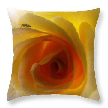 Throw Pillow featuring the photograph Shelter Me From Harm by Robyn King