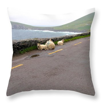 Shelter Throw Pillow by Suzanne Oesterling