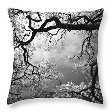 Sheltering Sky Throw Pillow by Laurie Search
