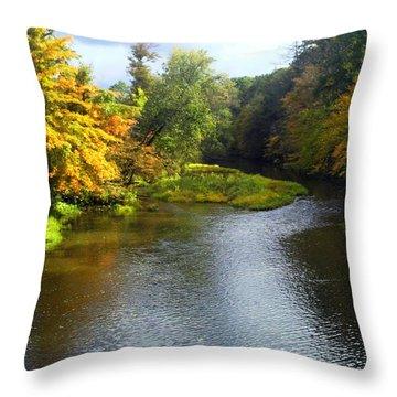 Shenago River @ Iron Bridge Throw Pillow