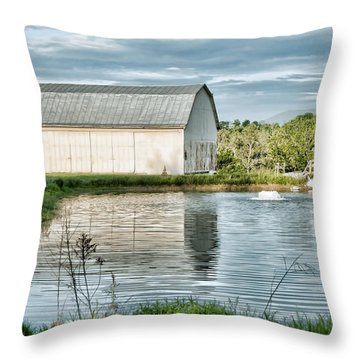 Shenandoah Barn Reflection Throw Pillow by Lara Ellis