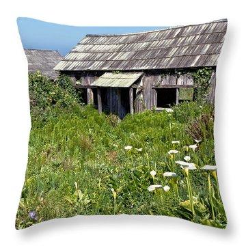 Shepherd's Cabin Throw Pillow by Kathleen Bishop