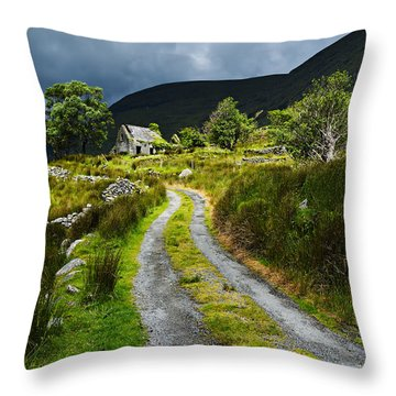 Shepherd's Delight Throw Pillow