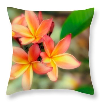 Sherbet Throw Pillow
