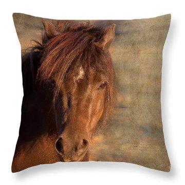 Shetland Pony At Sunset Throw Pillow