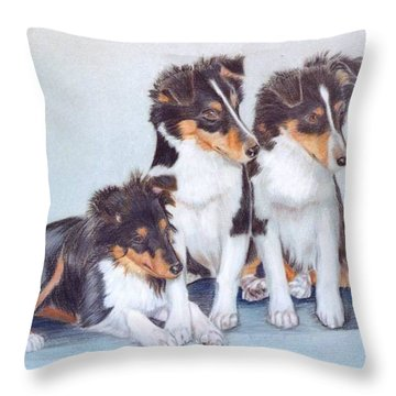 Shetland Sheepdog Puppies Throw Pillow by Ruth Seal