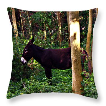 Shhh I'm Hiding Throw Pillow by Patricia Griffin Brett