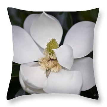 Throw Pillow featuring the photograph Shhhhh by Linda Blair