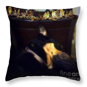 Shhhhhh It's That Time Again.  #gsd Throw Pillow