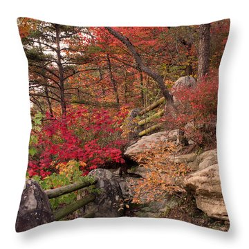 Shifting Colors Throw Pillow