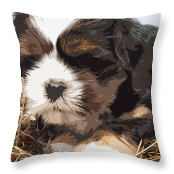 Shih Tzu On A String Throw Pillow by Robert Margetts