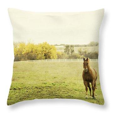 Shiloah On The Run Throw Pillow